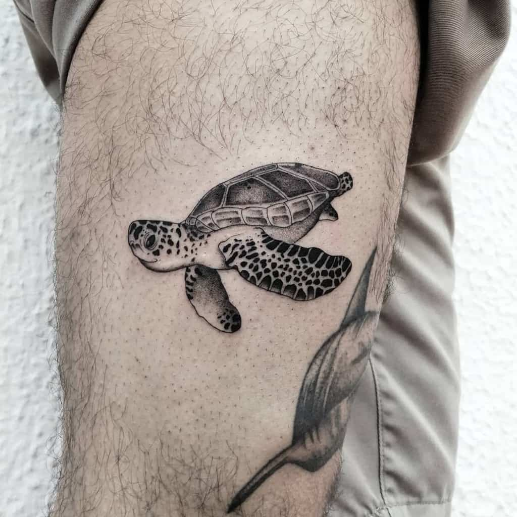 Small Black Turtle Tattoos ilch.dich