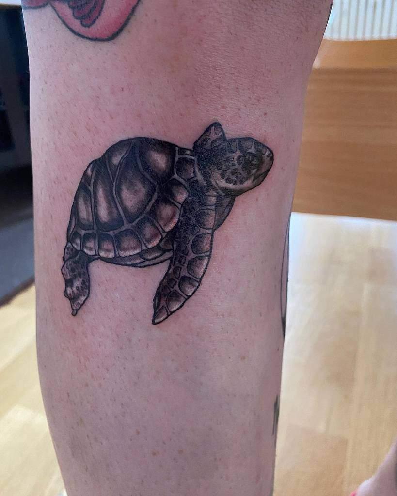 Small Black Turtle Tattoos new_tattoo_artist_