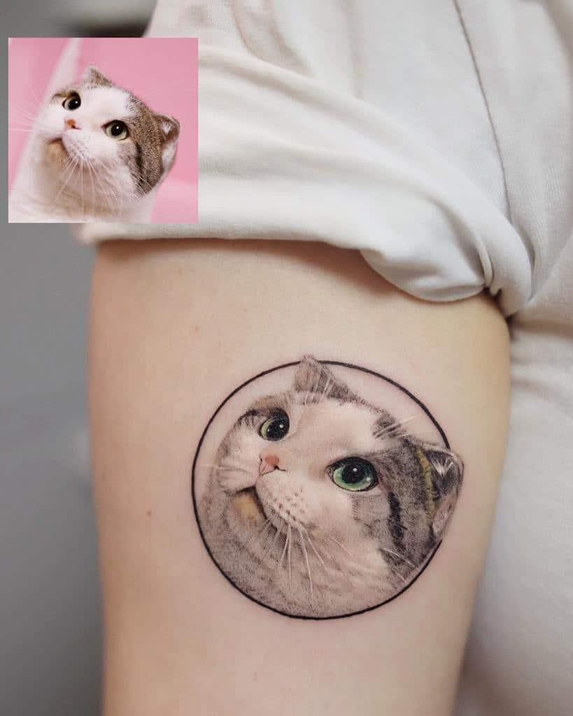 Small Cat Realistic Tattoos fattie_tao