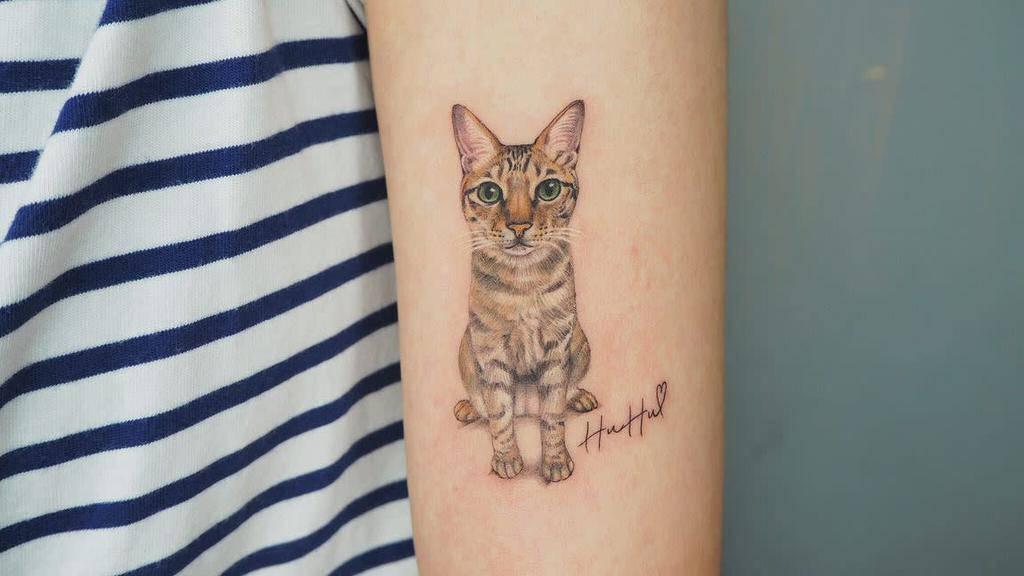 Small Cat Realistic Tattoos meilu_928