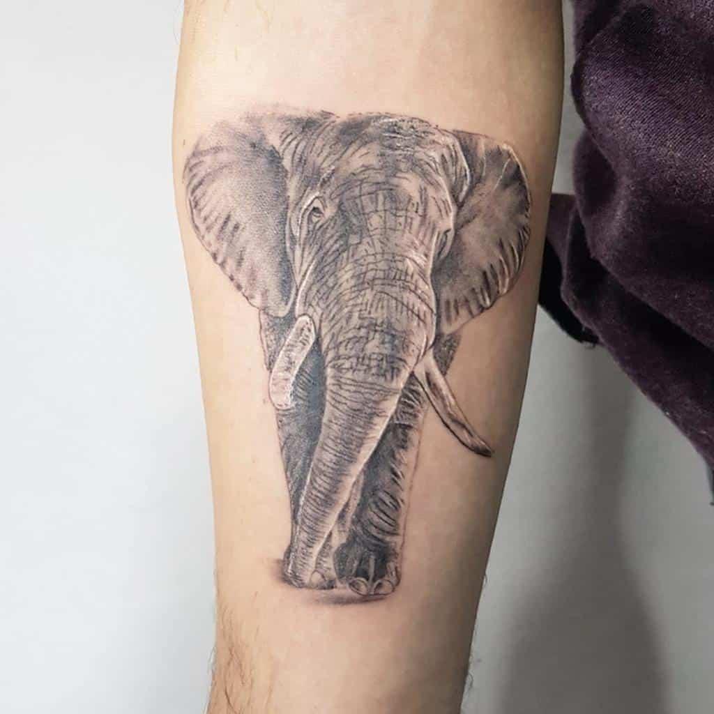 Small Elephant Forearm Tattoo Y M Tattoo