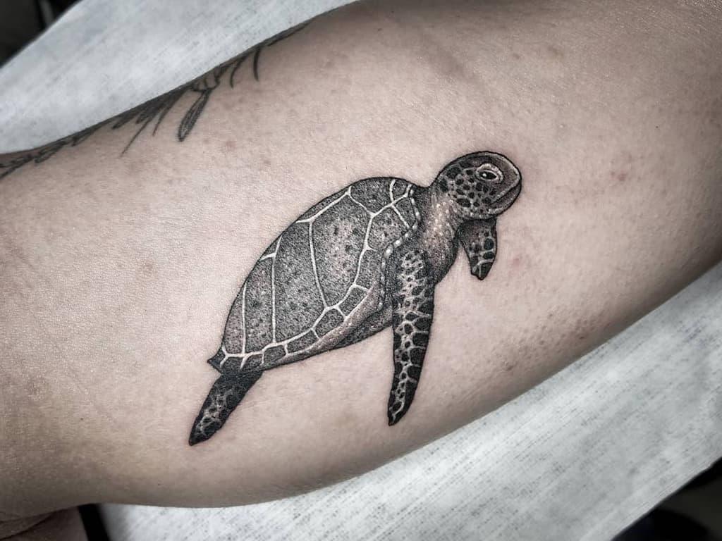 Small Realistic Turtle Tattoos bijoutattoos