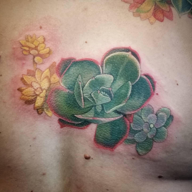 Realistic Succulent Tattoo -inkedbykendra