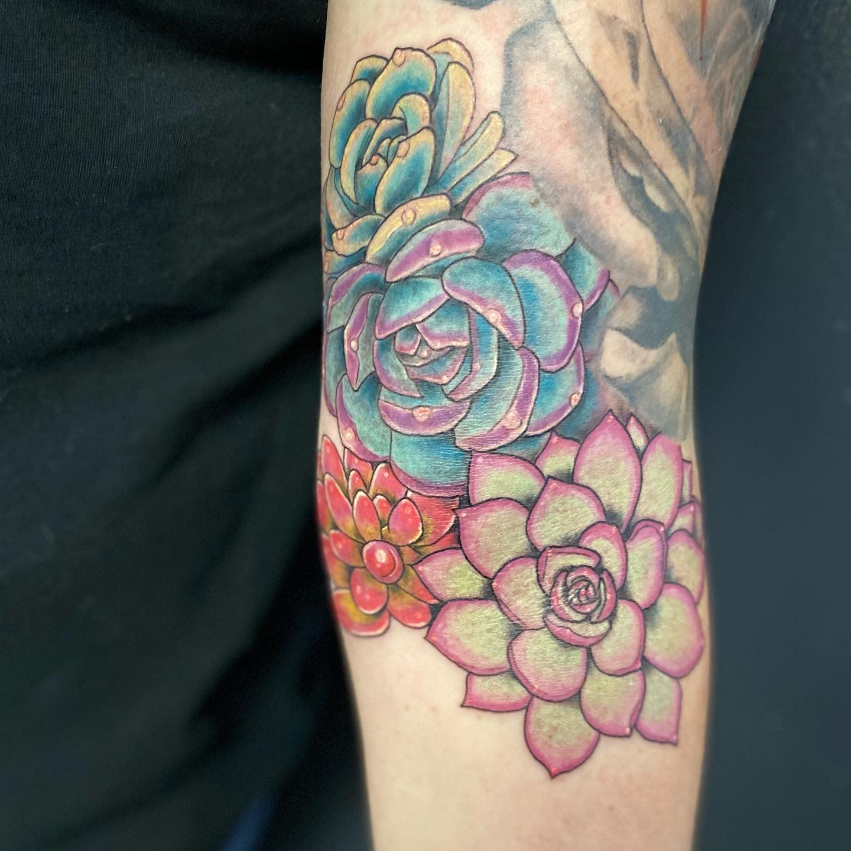 Realistic Succulent Tattoo -moxietattoo