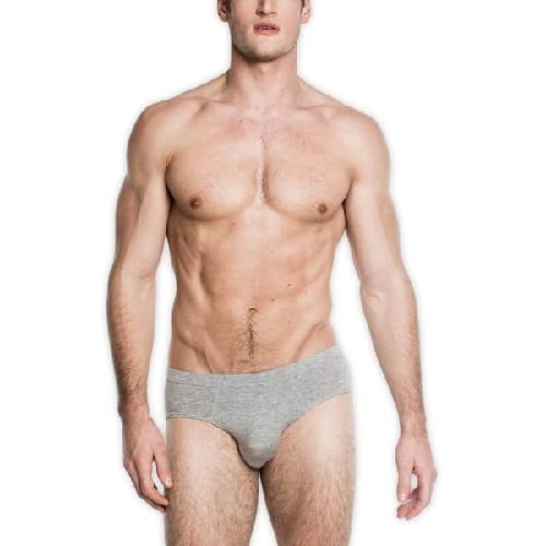 Tani USA SilkCut Briefs