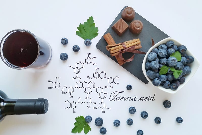 The-Importance-of-Tannins