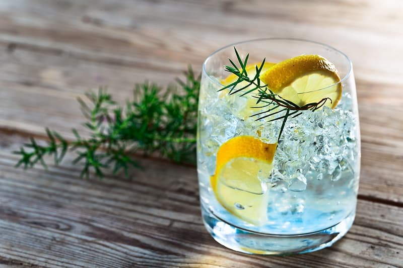 The Top 15 Best Gin Drinks to Try in 2021
