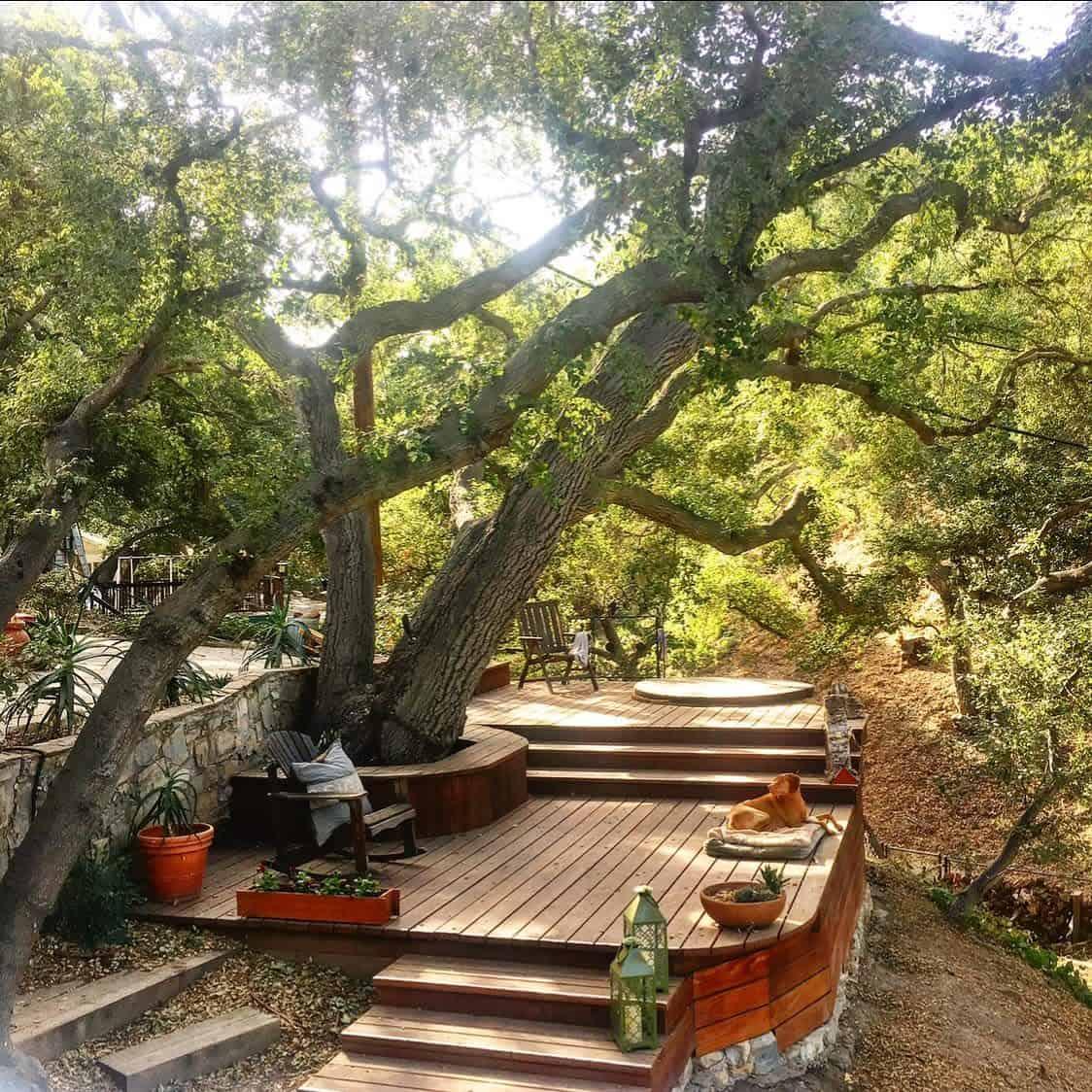 Tree Bench Garden Bench Ideas -shadygrovecottage