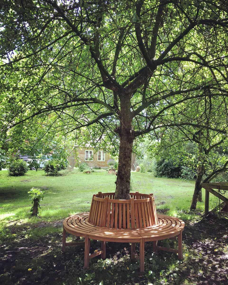Tree Bench Garden Bench Ideas -warftsimmerdeis
