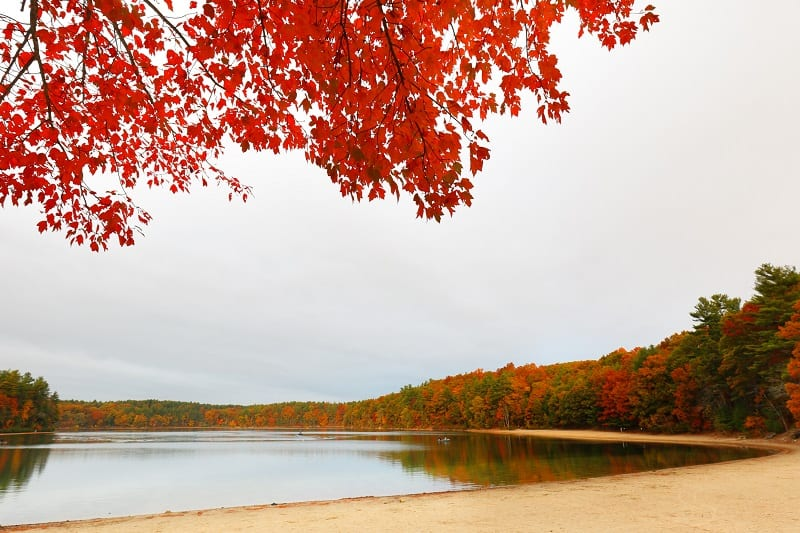 Walden-Pond-Massachusetts