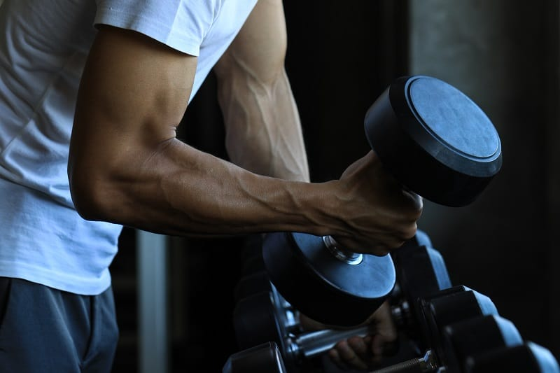 What-Muscles-Should-You-Aim-To-Work