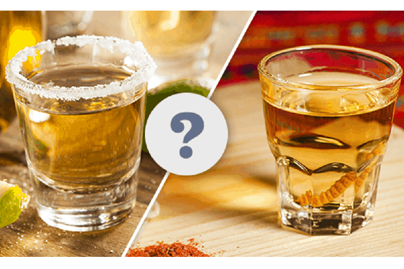 Why-do-they-taste-different-Mezcal-vs-Tequila