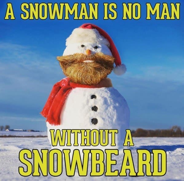 A Snowman Is No Man Without A Beard Memes