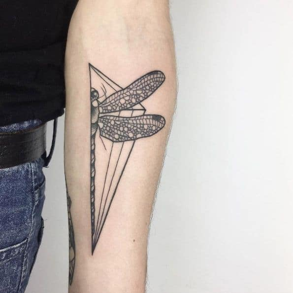 The heebie-jeebie half dragonfly posed on the forearm showing the magical aspects of the life