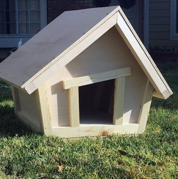 Abstract Dog House Designs