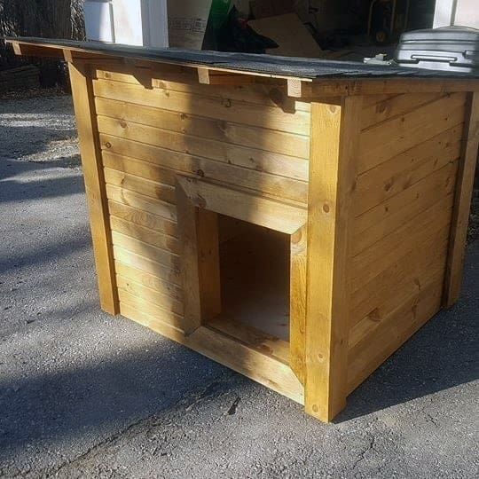 All Wood Cool Dog House Designs