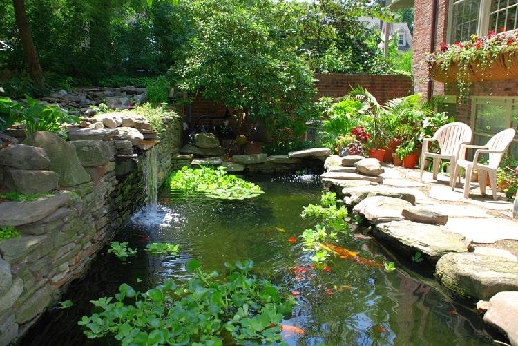 Amazing Backyard Koi Pond With Waterfall
