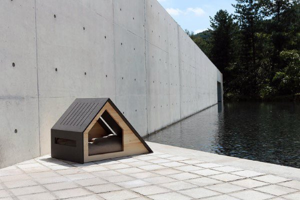 Amazing Dog House Designs With Modern Style