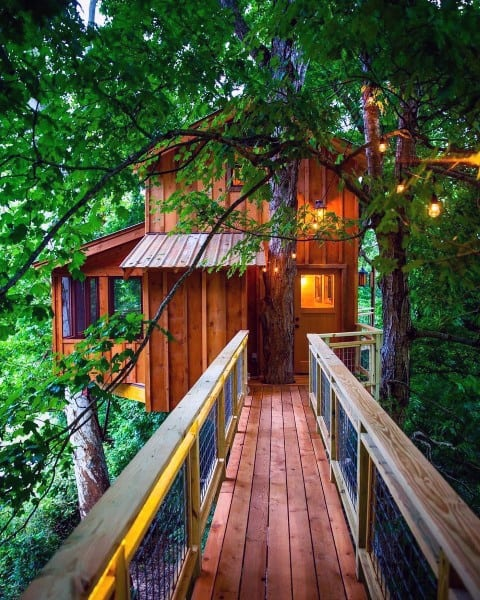 Amazing Ideas For A Treehouse