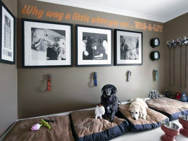 Amazing Multiple Dog Room Ideas