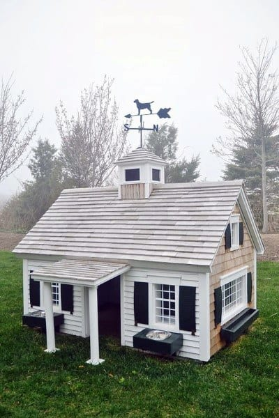Amazing Realistic Dog House Designs