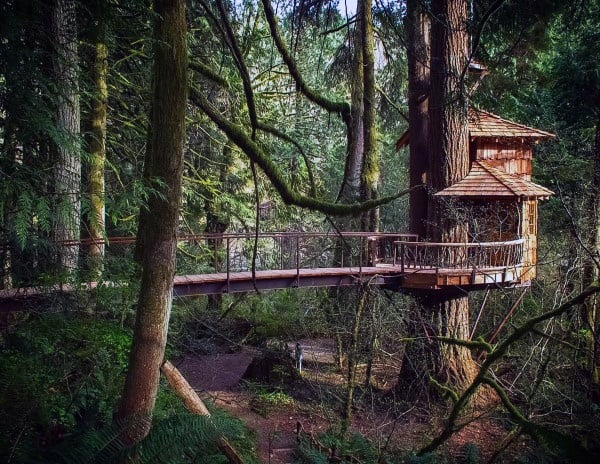 Amazing Treehouse Ideas