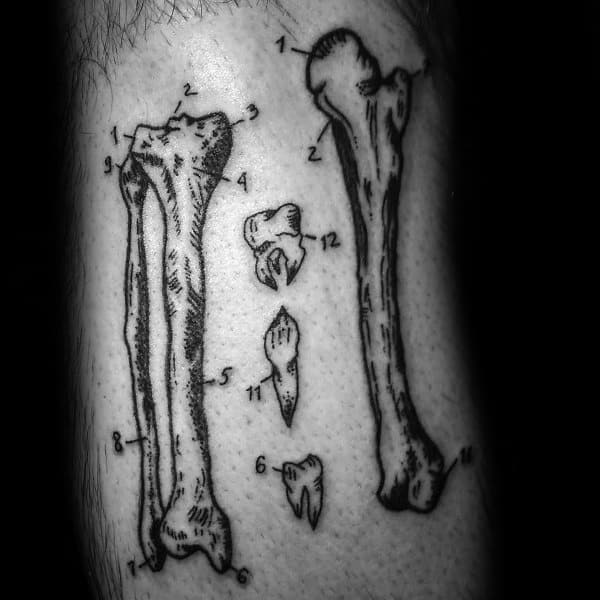Anatomical Themed Tattoo Ideas For Men