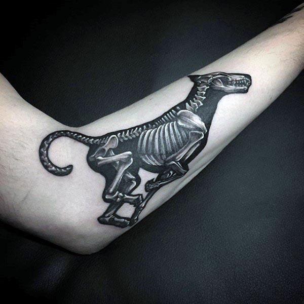 Animal Running X Ray Cool Mens Forearm Bone Tattoos