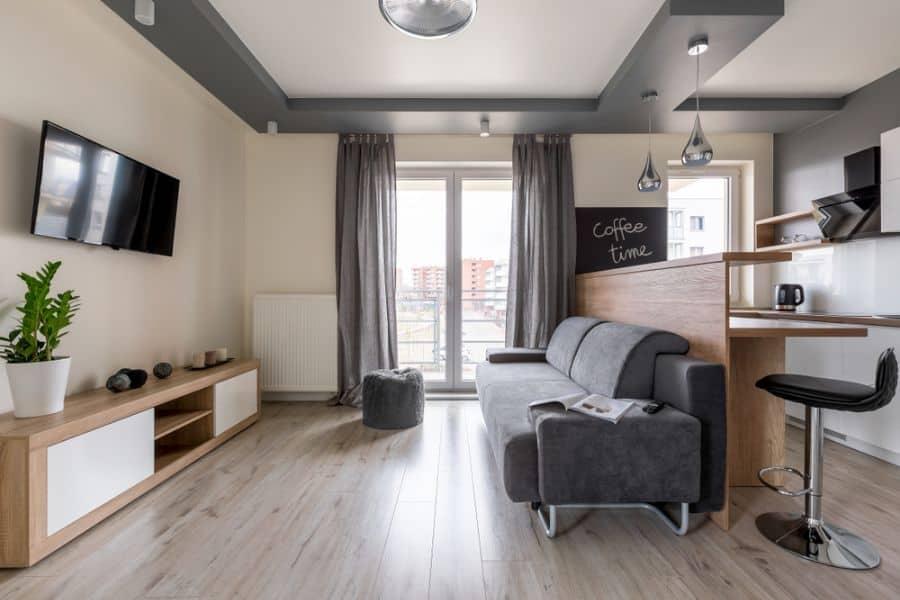 Apartment Living Room Decorating Ideas 7