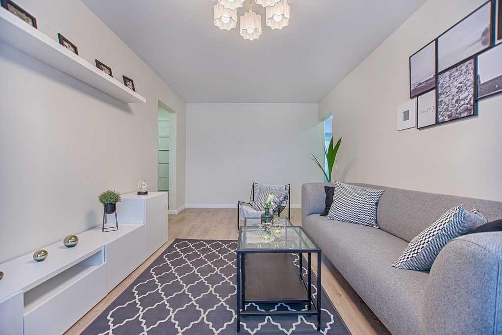 Apartment Minimalist Living Room