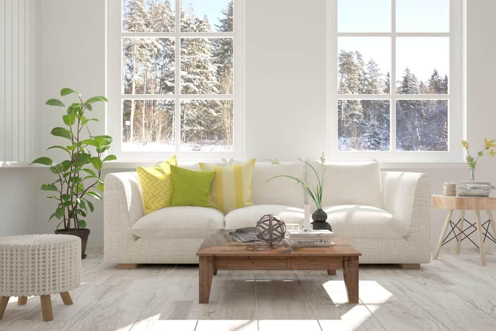 Apartment Scandinavian Minimalist Living Room 2