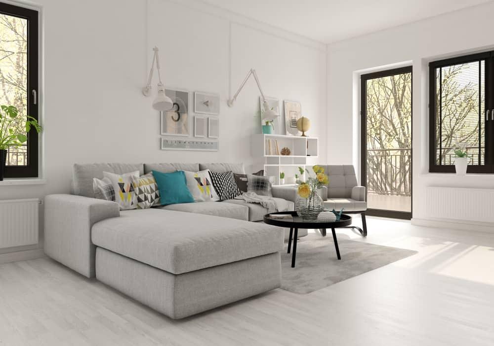 Apartment Scandinavian Minimalist Living Room