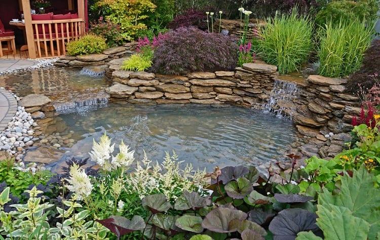 Aquatic Garden Backyard Waterfall