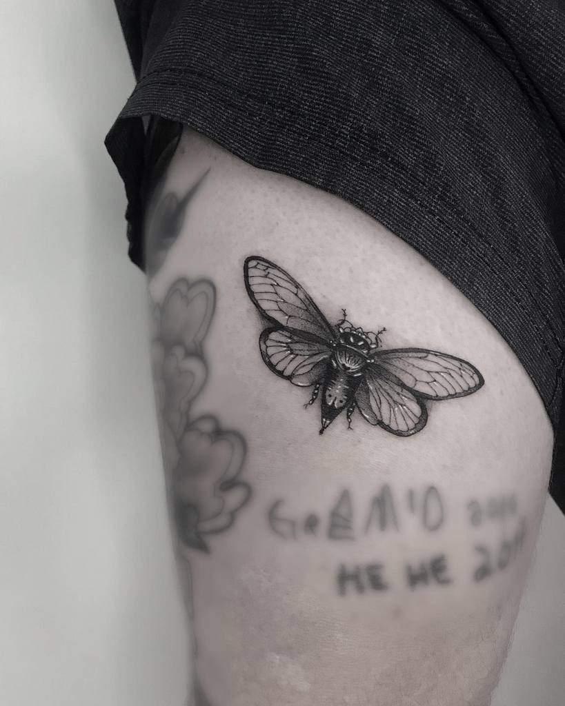 arm Cicada Tattoos murielpeloso