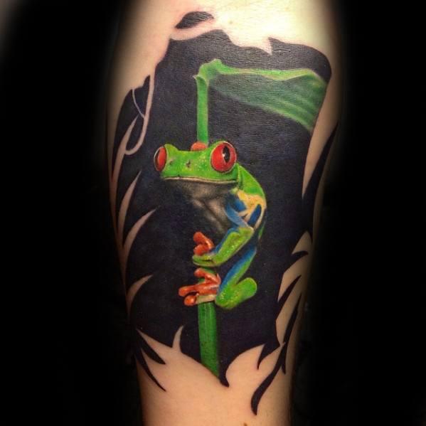 Arm Artistic Male Tree Frog Tattoo Ideas