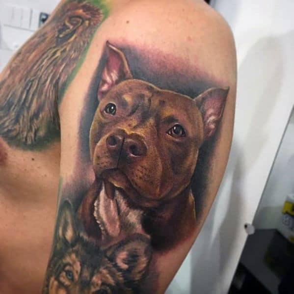 50 pitbull tattoo designs for men dog ink ideas rh nextluxury com tribal pitbull tattoo designs boog pitbull tattoo designs