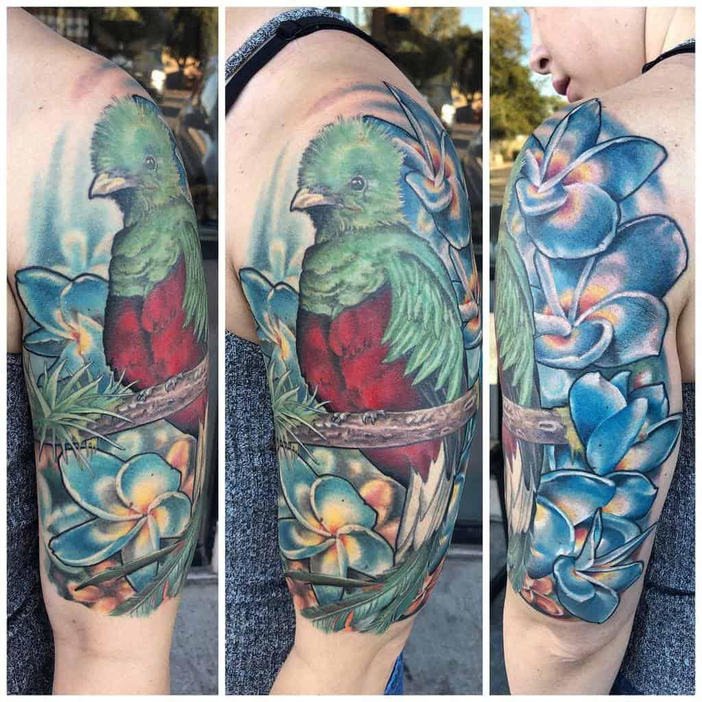 Arm Quetzal Tattoos Johnhansentattoo
