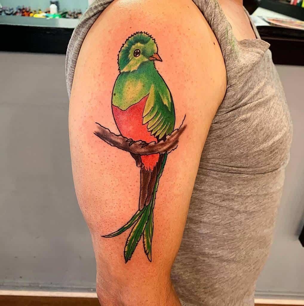 Arm Quetzal Tattoos Nickkartchner