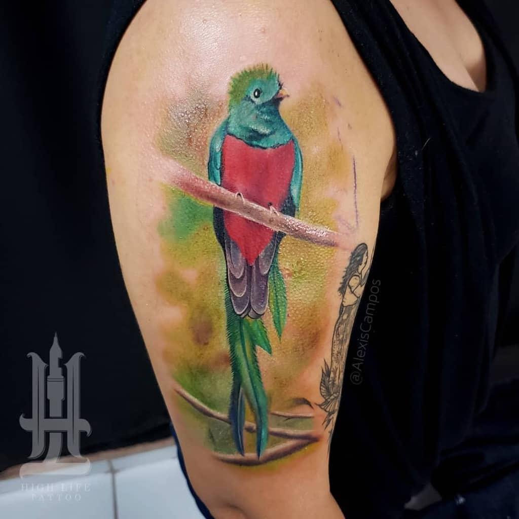 Arm Quetzal Tattoos Temperism1