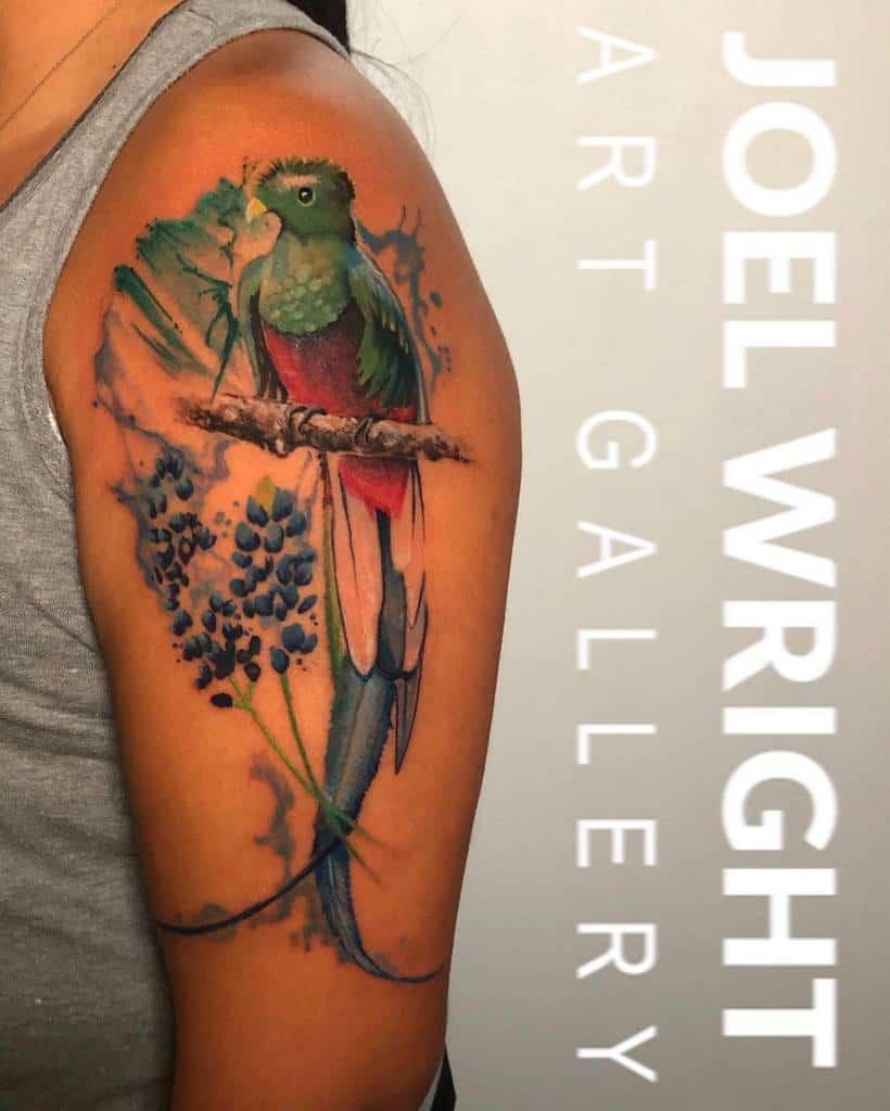 Arm Quetzal Tattoos Wrightzen Beba2trill