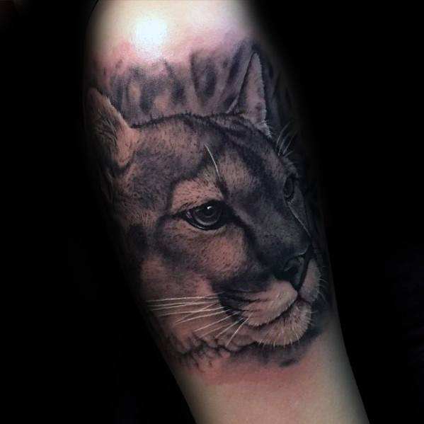 Arm Realistic Male Cool Mountain Lion Tattoo Ideas