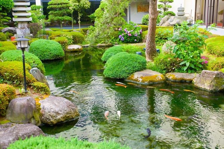 Asian Style With Flowers Backyard Koi Pond