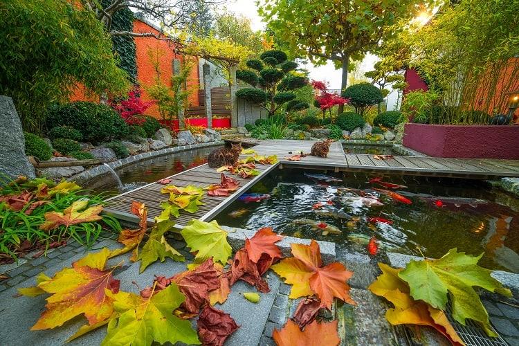 Asian Style Wooden backyard koi pond