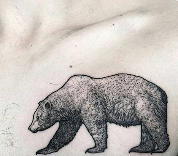 Awesome Detailed California Bear Male Chest Tattoos
