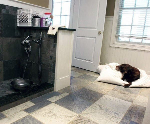 Awesome Dog Room Inspiration
