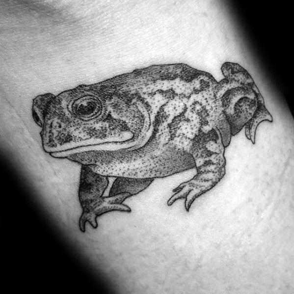Awesome Dotwork Arm Toad Tattoos For Men