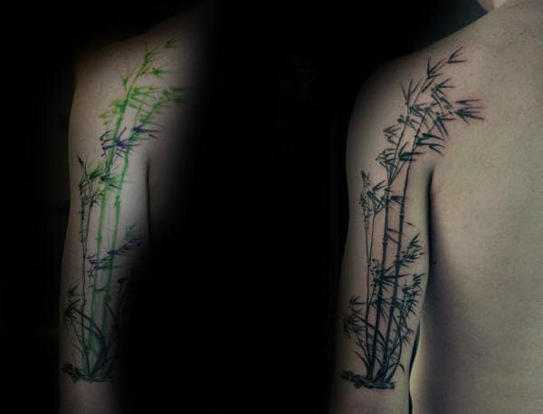 Awesome Green Bamboo Ink Tattoo On Mans Arm