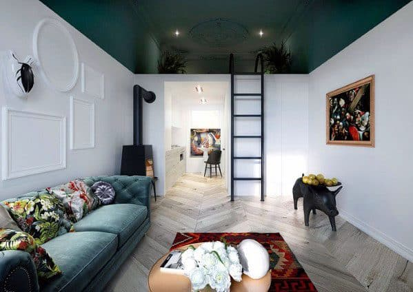 Awesome Studio Apartment Ideas With Painted Ceiling And Hardwood Floors
