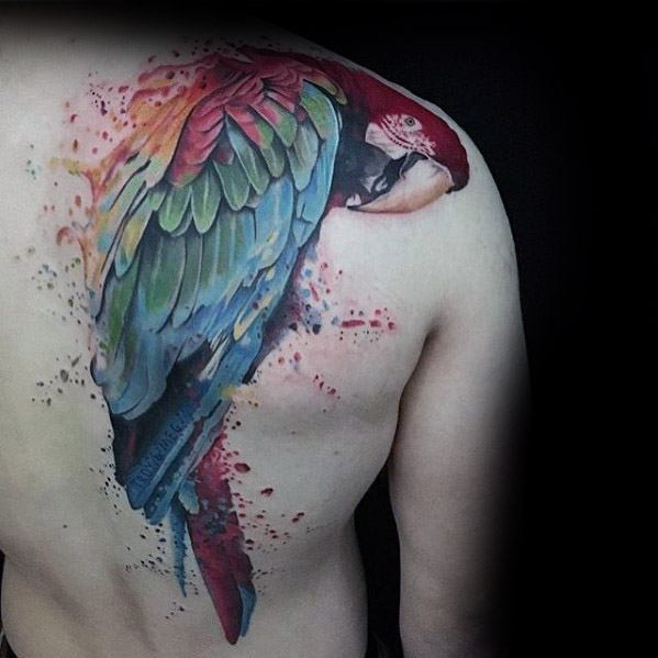 3b2d8bc7b89da Back And Shoulder Watercolor Mens Manly Parrot Tattoo Designs