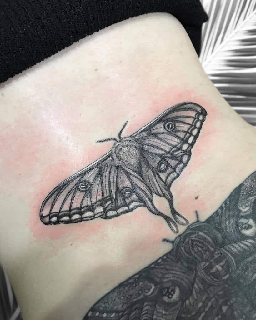 Back Luna Moth Tattoo Lou Hopper Tattoo
